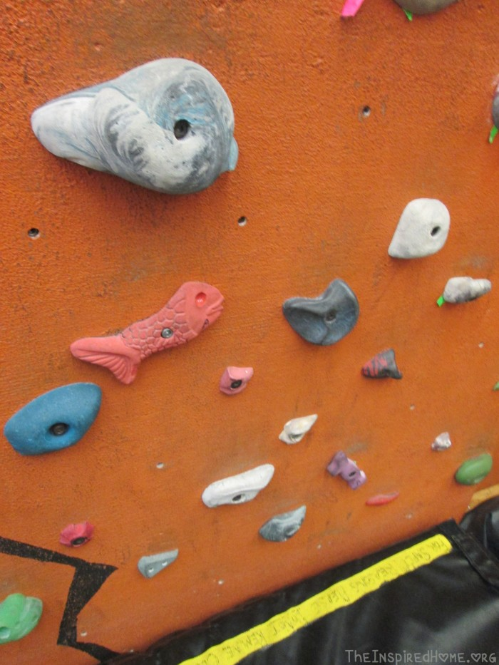 Rock Climbing - Kid Friendly Holds