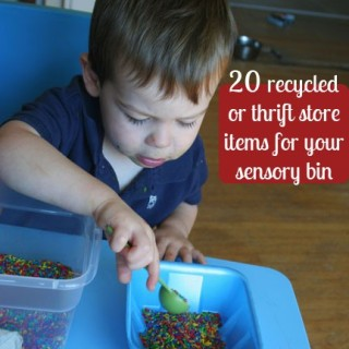 20 Recycled & Thrift Items: Sensory Bin