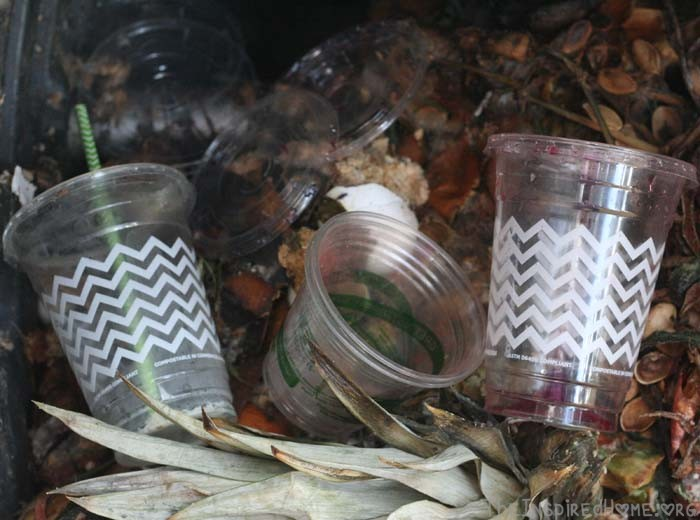 Earth Day PlayDate Compostable Cups in the Compost