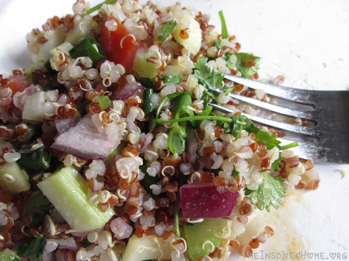 TheInspiredHome.Org // Colourful Quinoa Salad
