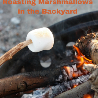 Mini Adventure: Marshmallows in the Backyard