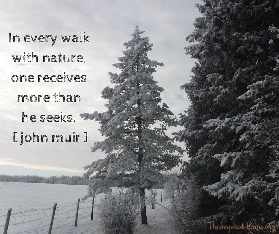 In every walk with nature,one receives more thanhe seeks. [ john muir ]