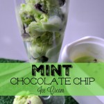 Celebrate St.Patrick's Day with a bit of green! Mint Chocolate Chip Ice Cream