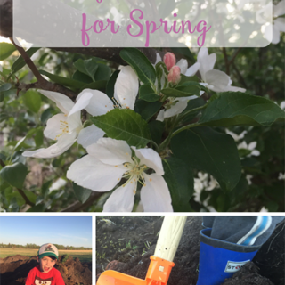 Easy Activities for Spring