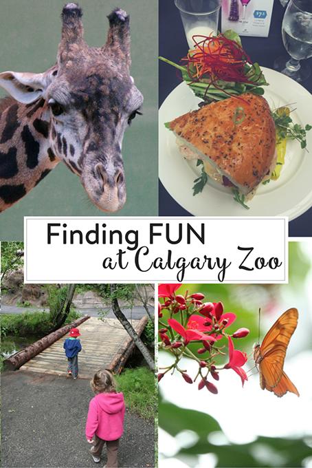 Finding FUN at the Calgary Zoo
