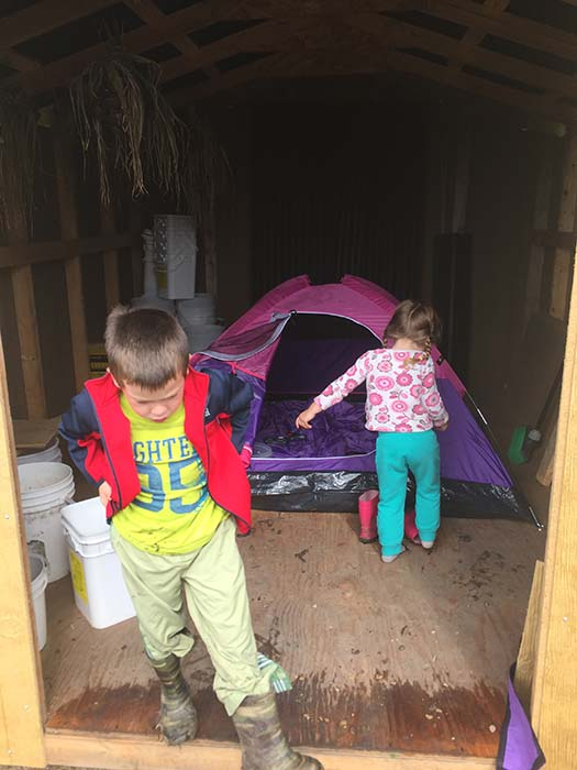 Tent in a Shed