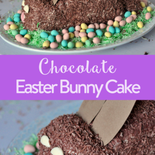 Easter easter crafts easter activities the inspired home chocolate easter bunny cake lactose free negle Images