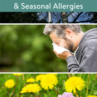 Planting the Spring Blooms & Seasonal Allergies