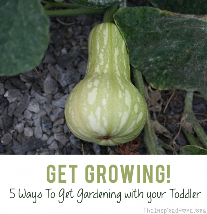 Get Growing: 5 Ways to Get Gardening with Your Toddler by theinspiredhome.org