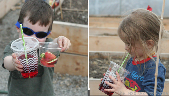 Simple Earth Day Playdate Compostable Cups by Greenmunch.ca