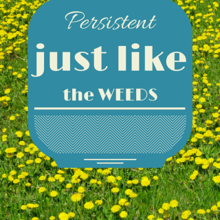 Persistent (Just Like the Weeds)