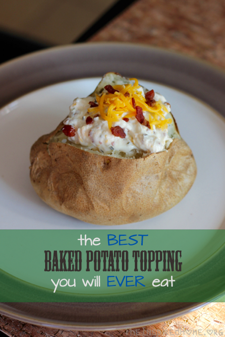 TheInspiredHome.org // the BEST baked potato topping you will EVER eat. Seriously. It also makes a fantastic baked dip! Sour cream, cream cheese, bacon bits, it's all here and it's all DELICIOUS.