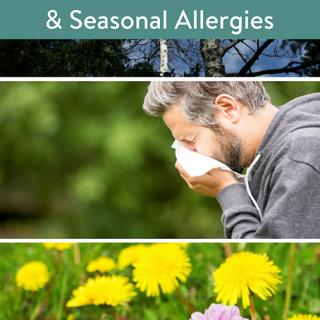 Planting the Spring Blooms & Seasonal Allergies