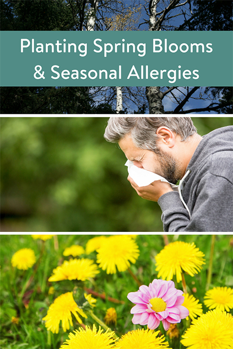 TheInspiredHome.org // Tips to Help Your Seasonal Allergies